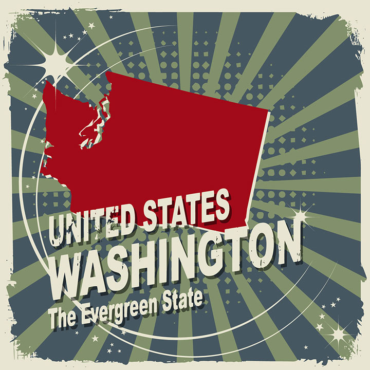 abstract washington map